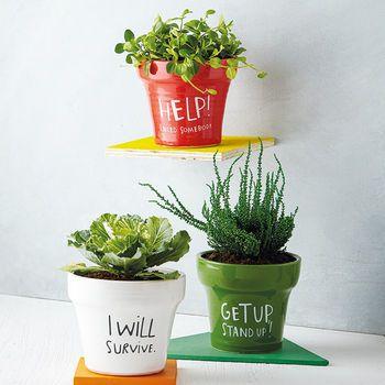 Lyrical Plant Pot Plants Ikea Plants Handmade Plant