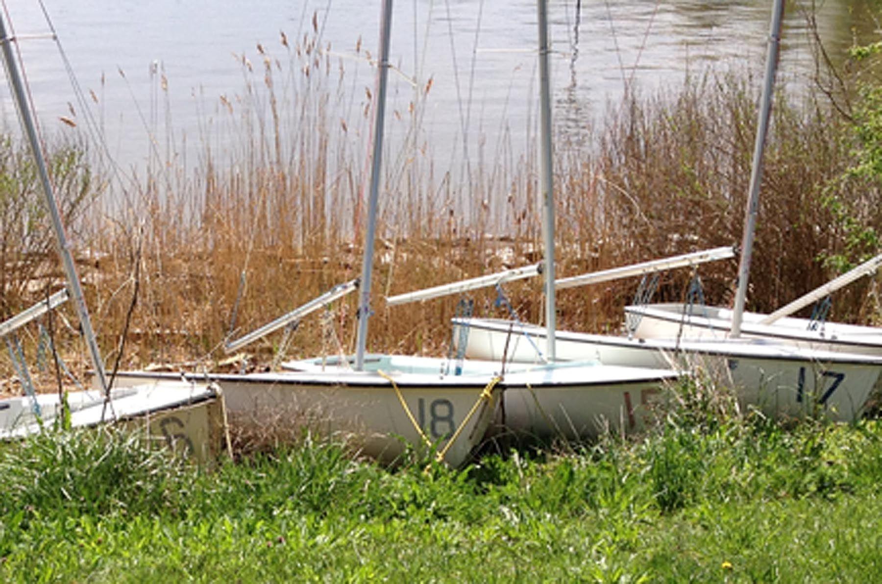 Beached regatta