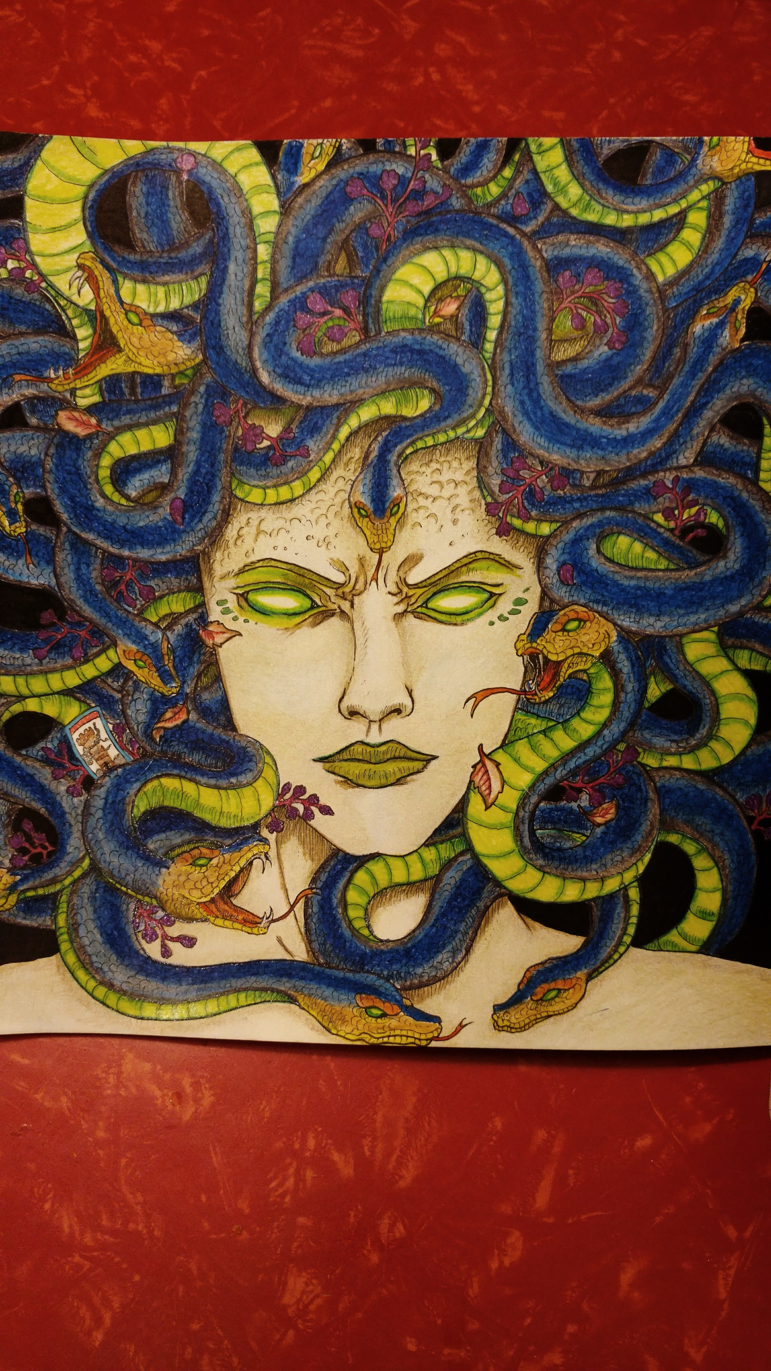 Mythomorphia Medusa Done In Derwent Color Soft Pencils By Mcm Coloring Books Colorful Art Coloring Pages