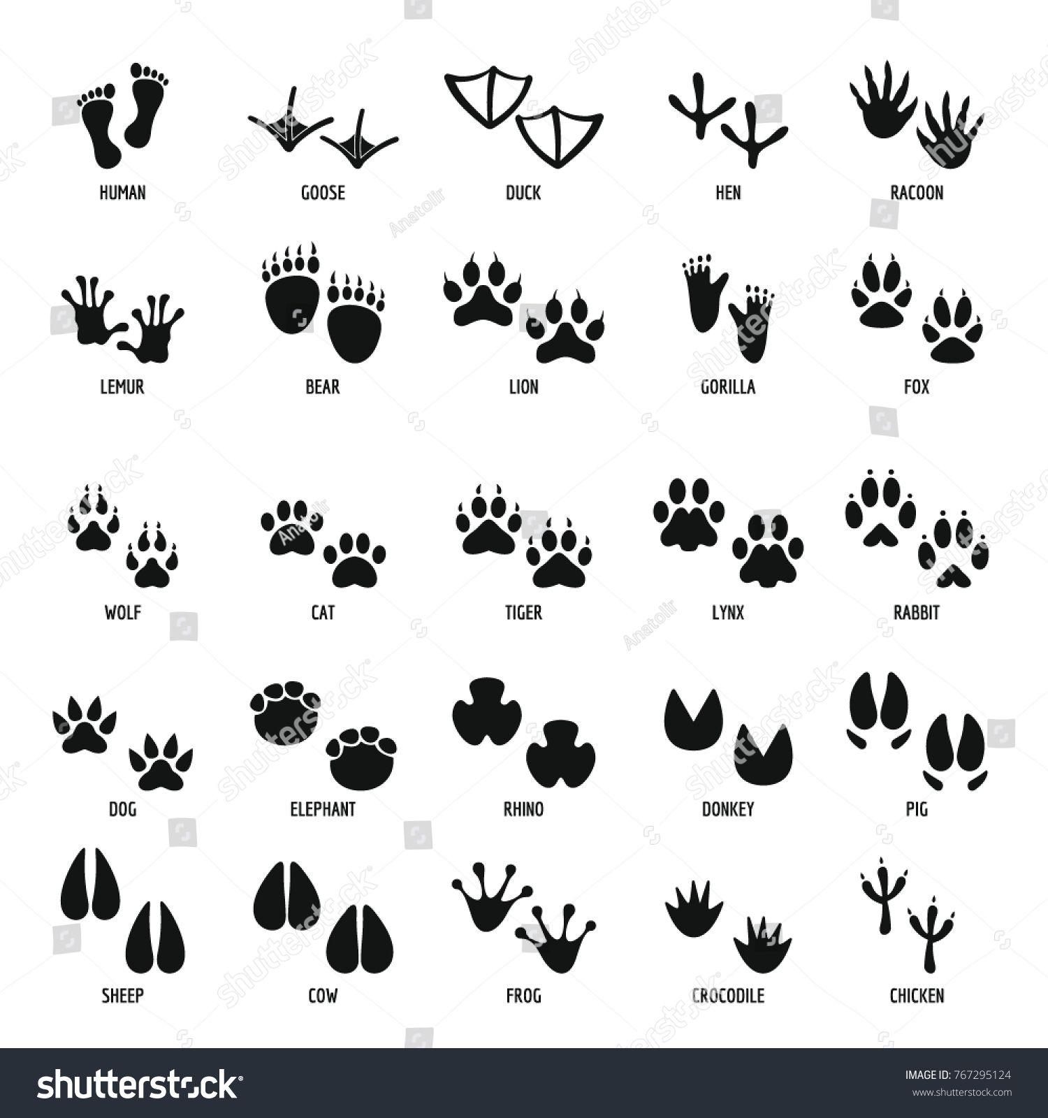 Animal Footprint Icons Set Simple Illustration Of 25