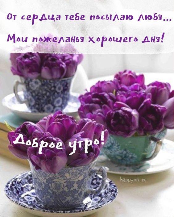 С добрым весенним утром! Красивые картинки о весне с ...