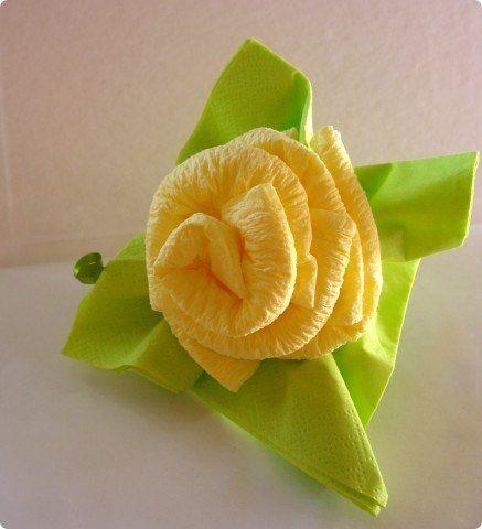 ruža 1