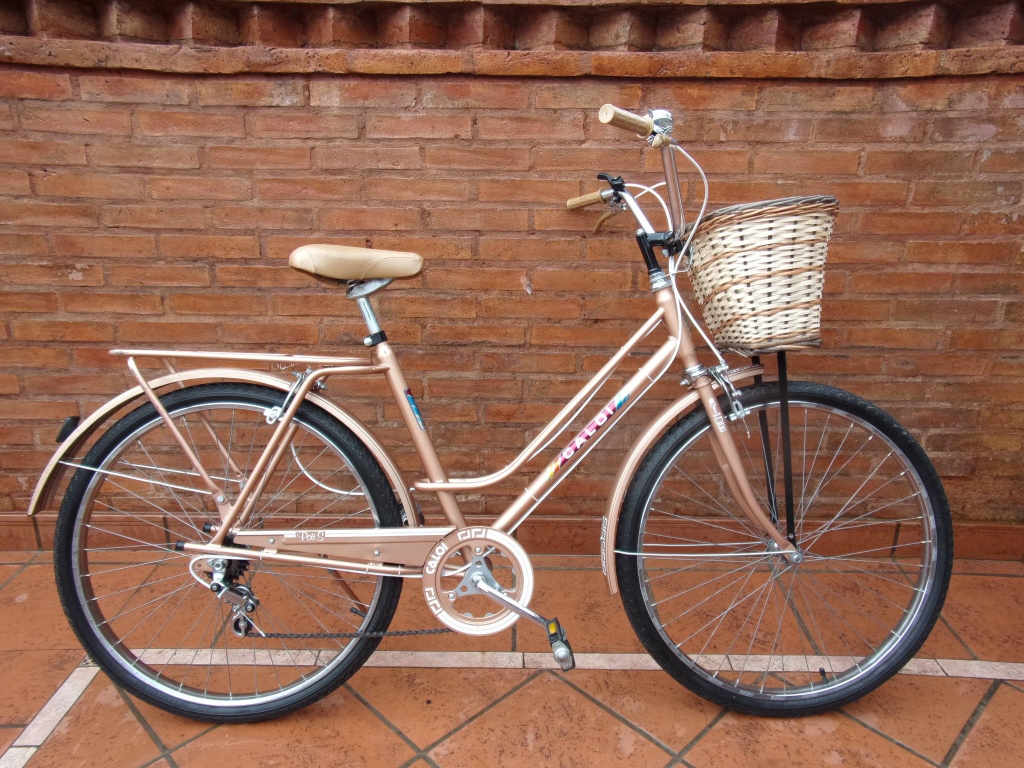 Bicicleta de PASEO \