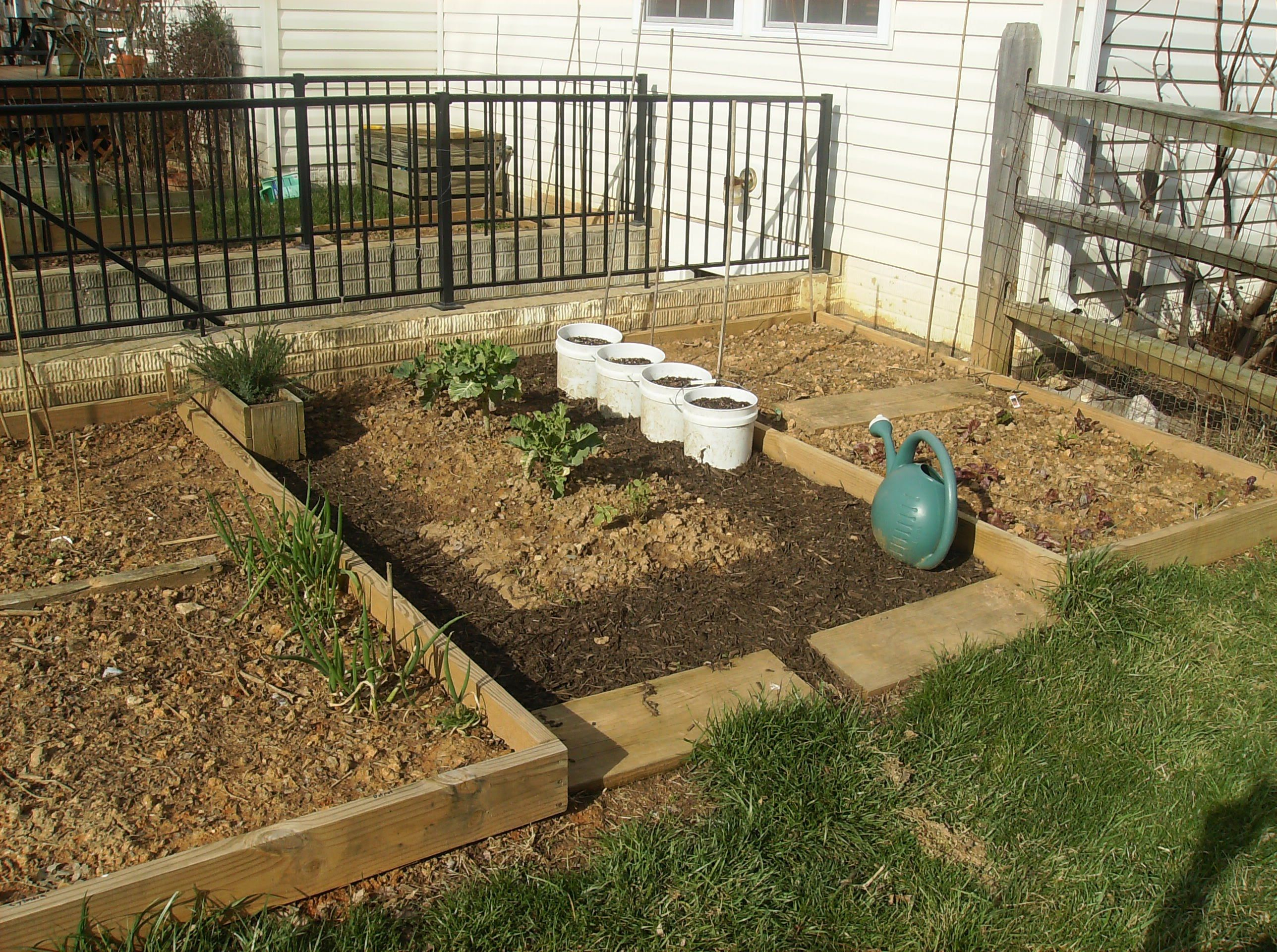 How to Create a Raised Bed Vegetable Garden | Vegetable garden ...