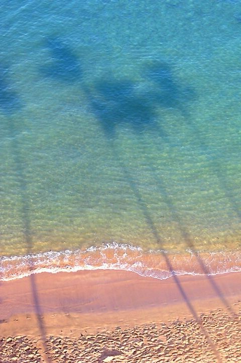 Huge palms cast their shadows on Kaanapali Beach, Maui. One of the most beautiful beaches in Hawaii.