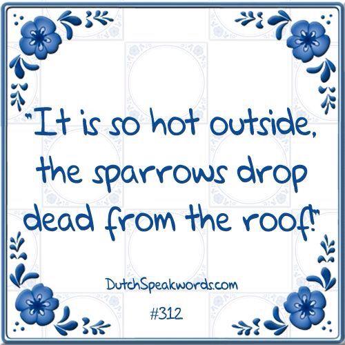 Grappige Citaten Engels : Het is zo heet buiten de mussen vallen dood van dak
