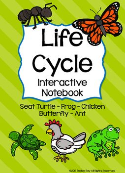 This+set+covers+the+Life+Cycle+of+the+Sea+Turtle,+Ant,+Chicken,+Frog,+and+Butterfly.+All+you+need+to+do,+is+throw+one+or+two+of+the+five+activities+for+each+Life+Cycle+into+your+own+plans!+Just+print+and+complete!+Students+can+glue+each+item+into+their+notebooks+for+progress+data+AND+a+nifty+take+home+for+the+end+of+the+year!