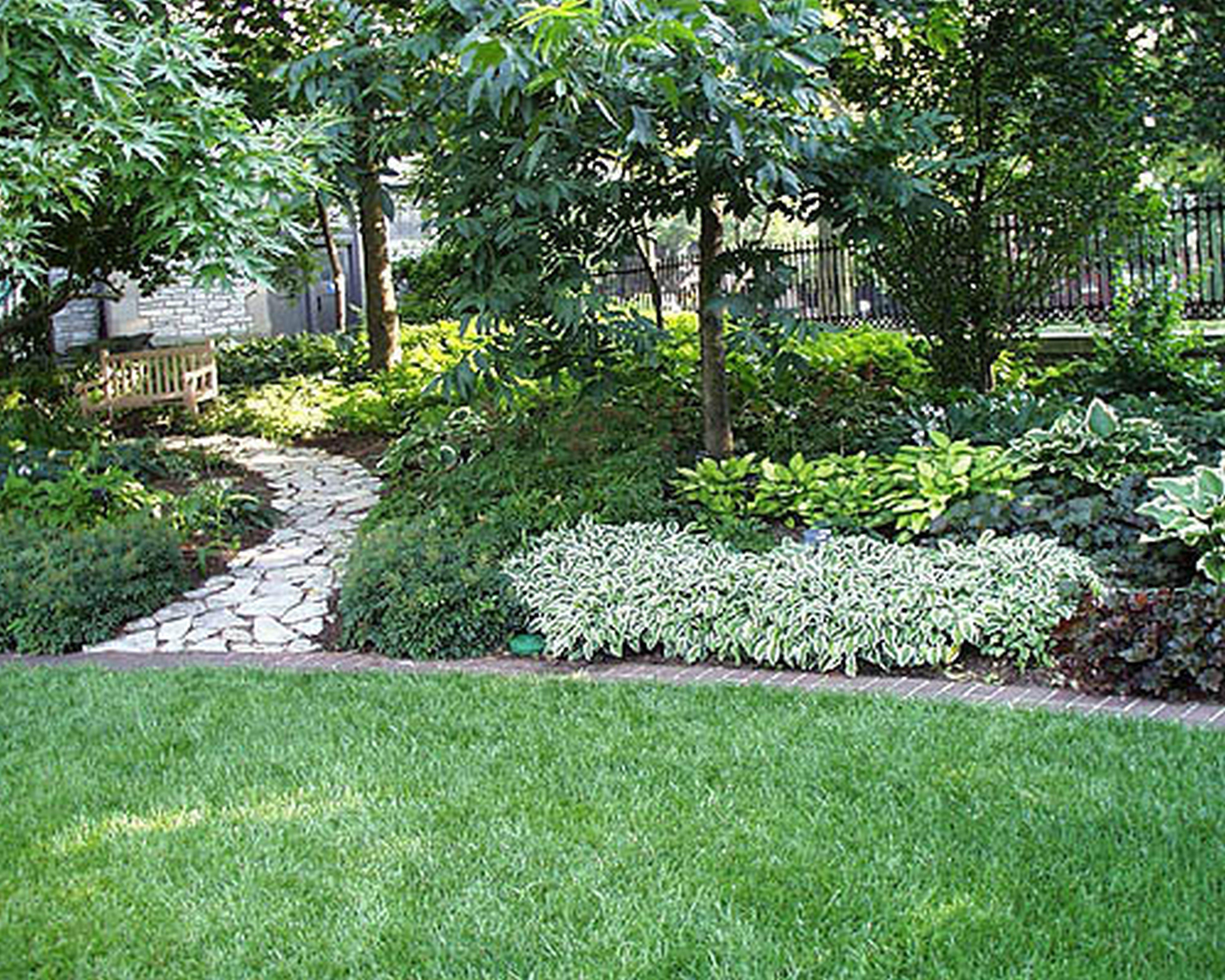driveway planting ideas nz Google Search Backyard