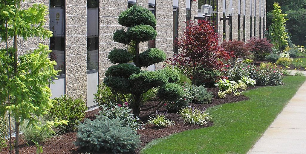 Circular driveway landscaping ideas commercial landscape for Landscaping ideas and designs