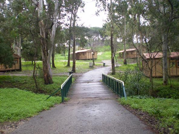 montasanto camp grounds | lisboa camping & bungalows, monsanto