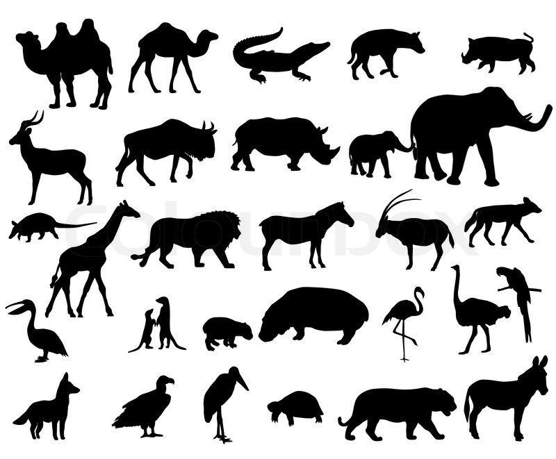 Tiere Afrikas Stock Vektor Colourbox Afrika Tiere Tiere Malen Ausgestopftes Tier