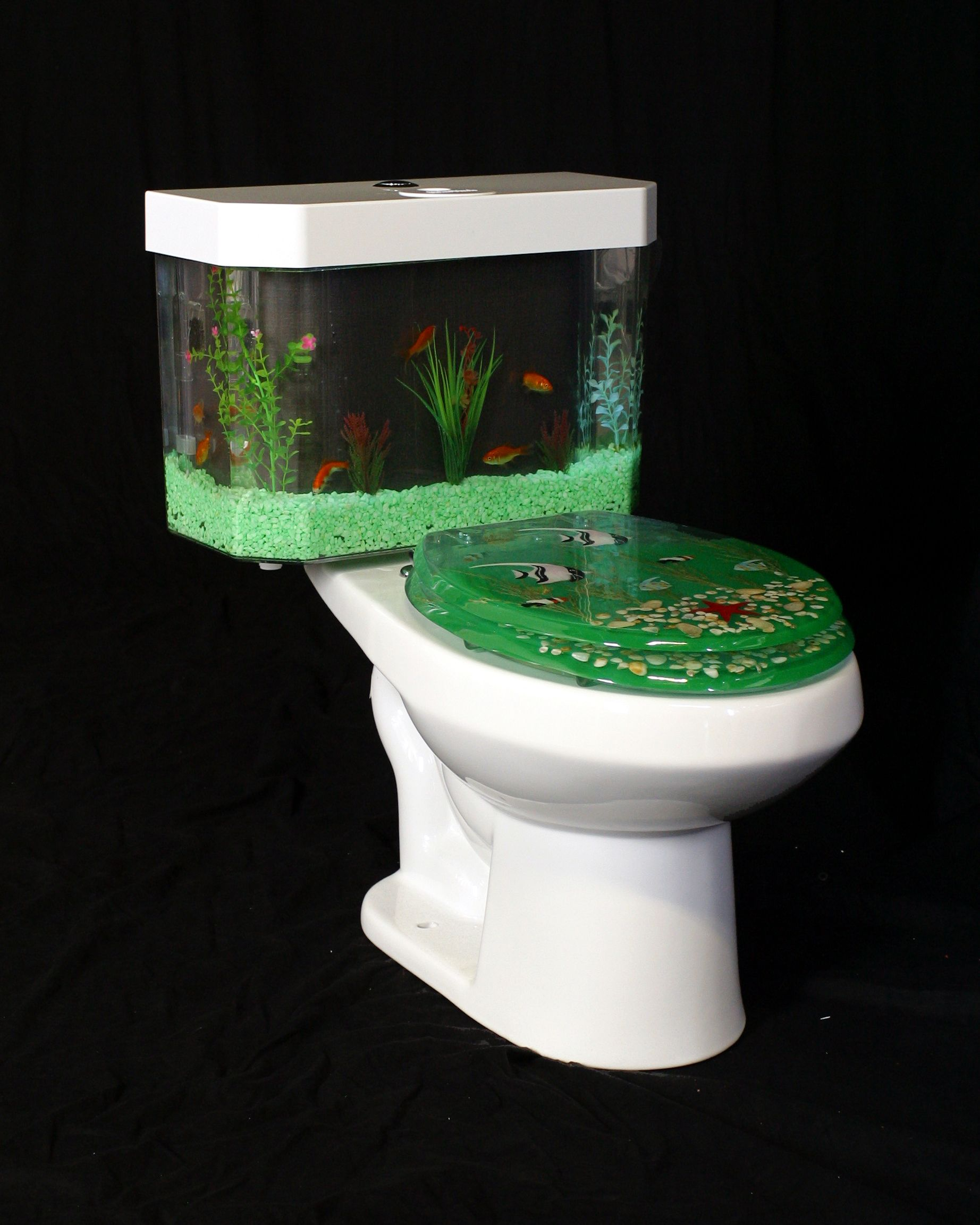 omg!!! look at this toilet. it is so weird! but according to the ...
