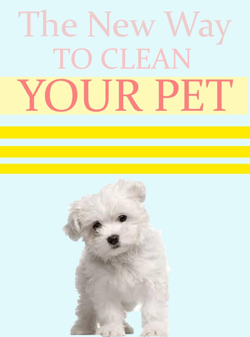 Pet Grooming Gloves By Furpal Plus Free Jewelry Pet Grooming Your Pet Pets