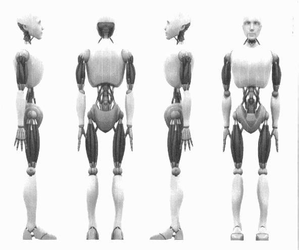 Pin Von Mwenye Hekima Auf Anatomy Studies/Drawing