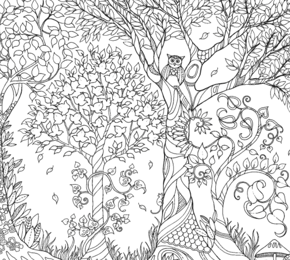 Inspirational Coloring Pages From Secret Garden Enchanted Forest