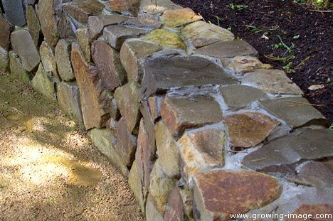 Rock Wall Design rock retaining wall set in cement Mortared Rock Wall Using Native Tan Cobble Chip Stone San Francisco Bay Area