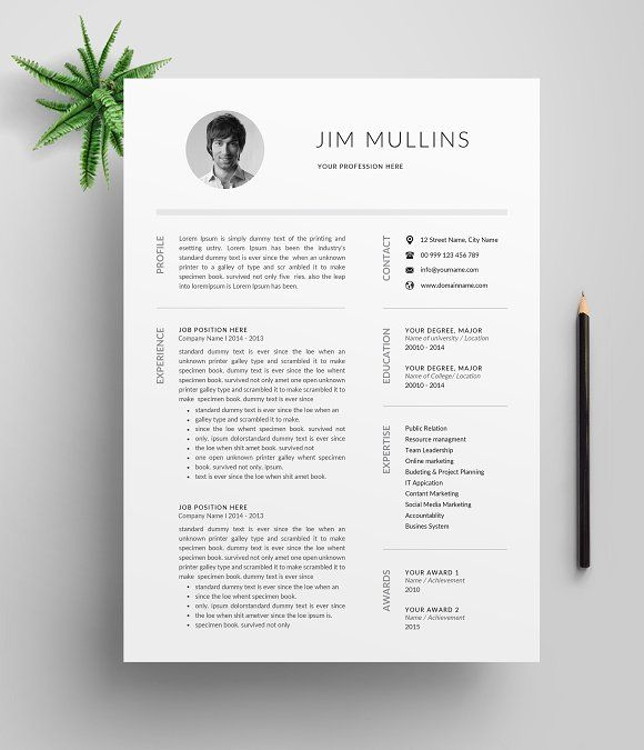 Resume/CV Template (3 Pages) by Designsbird on @creativemarket