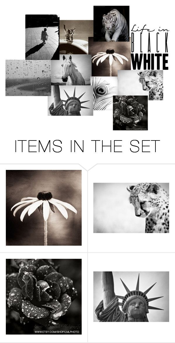 """""""for pittywittykitty"""" by carriecat123 ❤ liked on Polyvore featuring art"""