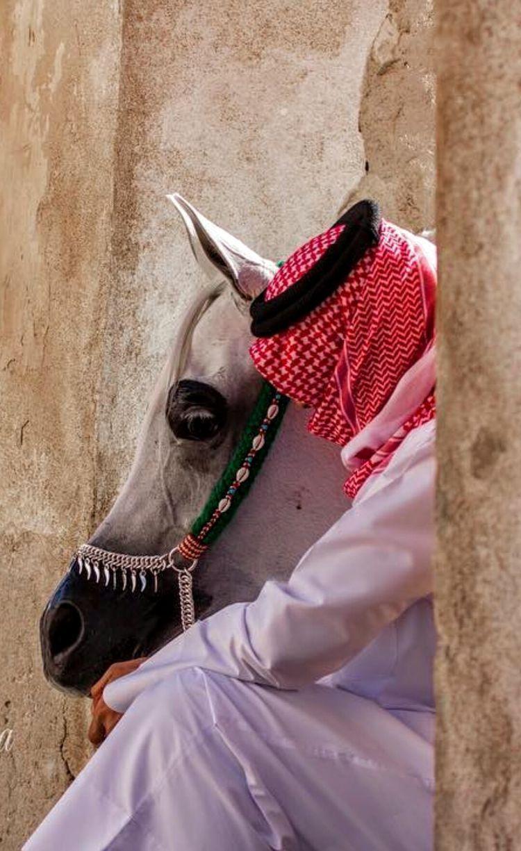 Tolles Bild Arab Men Fashion Horse Girl Photography Cute Friend Pictures