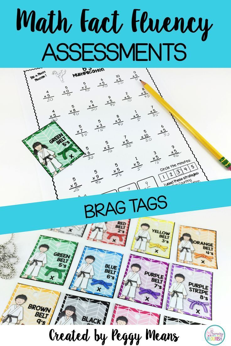 Multiplication Facts Assessments and Brag Tags - Karate Theme ...