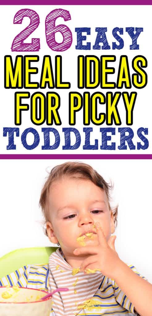 Toddler Food Ideas: What to Feed a Picky Eater images