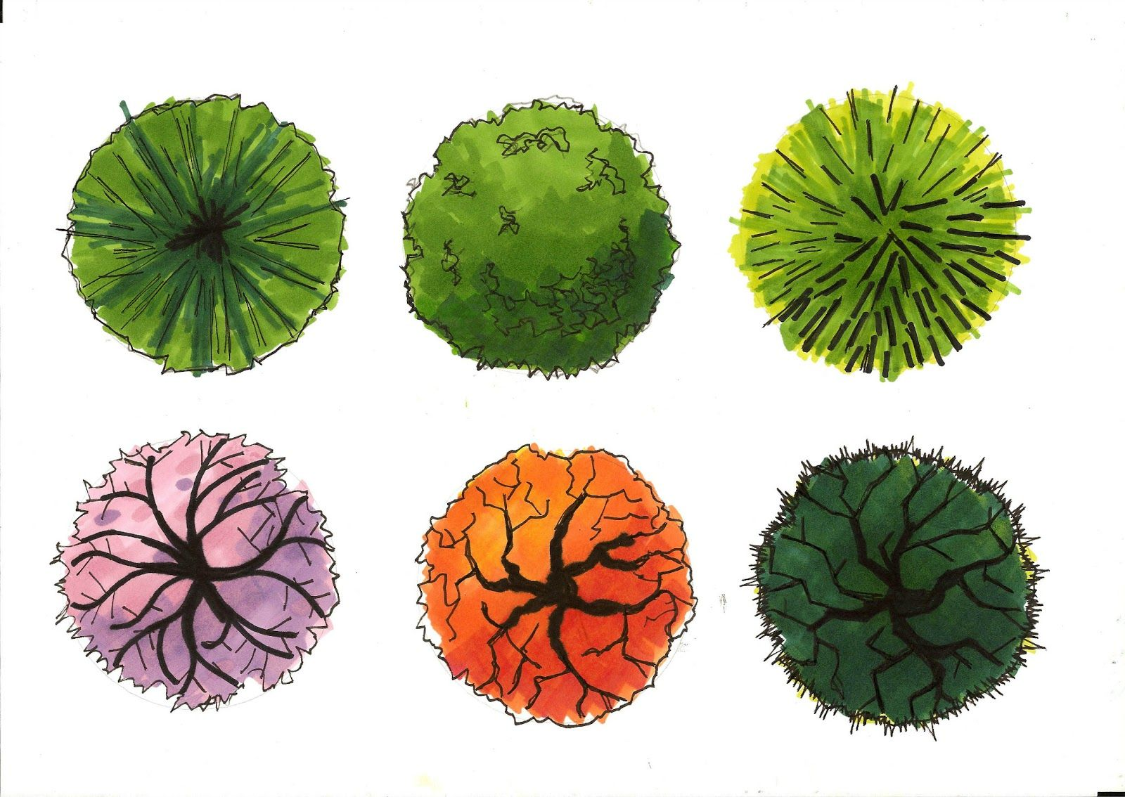 Garden Plans Watercolor Trees Top View Easy To Use In Your