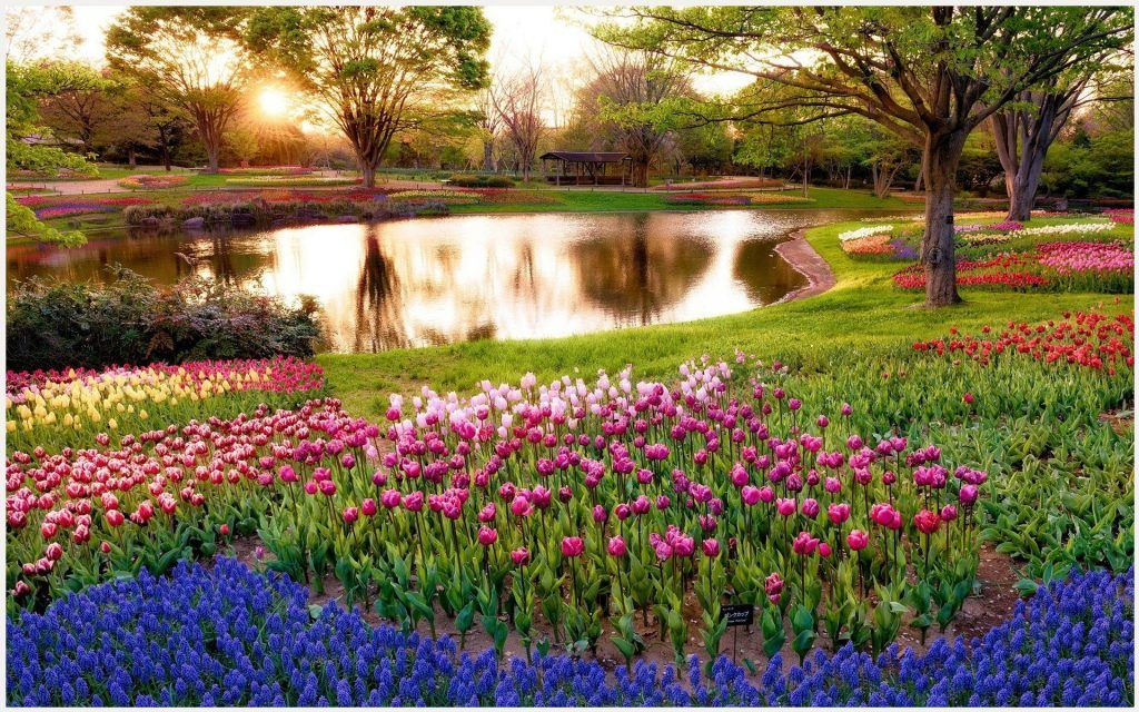 Flowers Garden Wallpaper 3d Flower Garden Wallpaper Beautiful Flower Garden Wallpaper Widescreen Beautif With Images Spring Wallpaper Beautiful Gardens Green Landscape