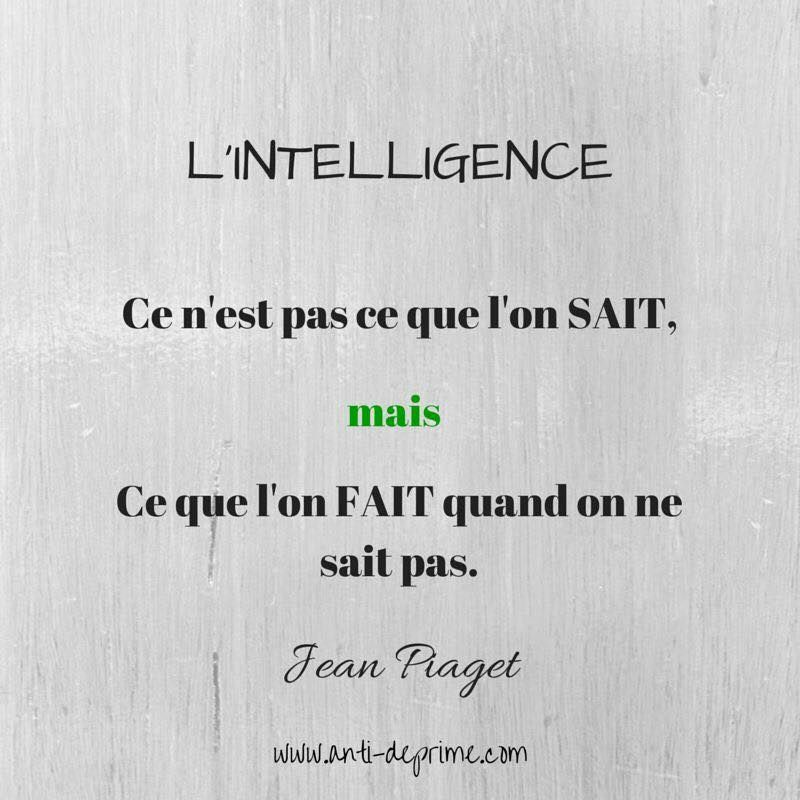L Intelligence Ce N Est Pas Ce Que L On Sait Mais Ce Que L On