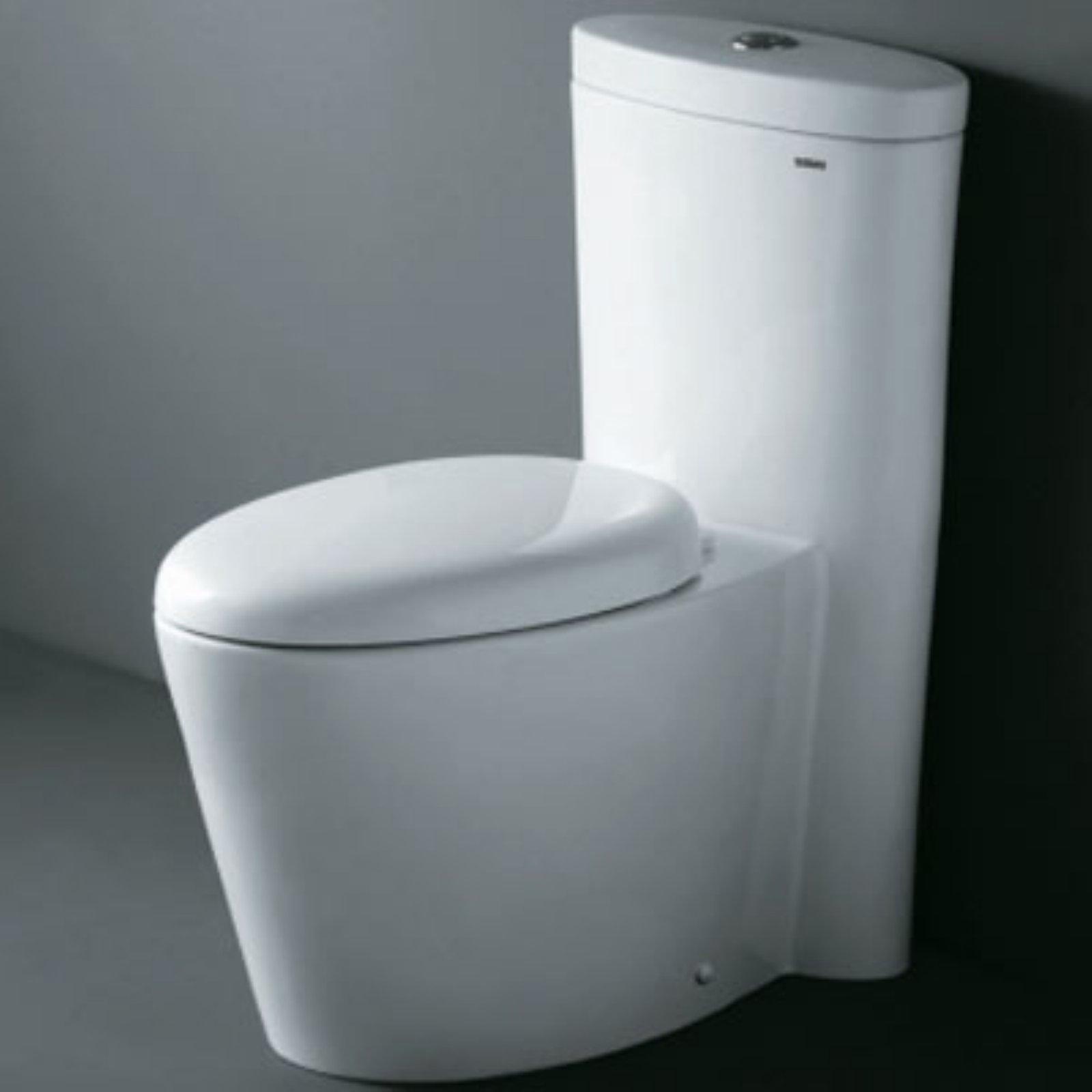Ariel Monterey Toilet Contemporary Toilets Modern Toilet Dual Flush Toilet