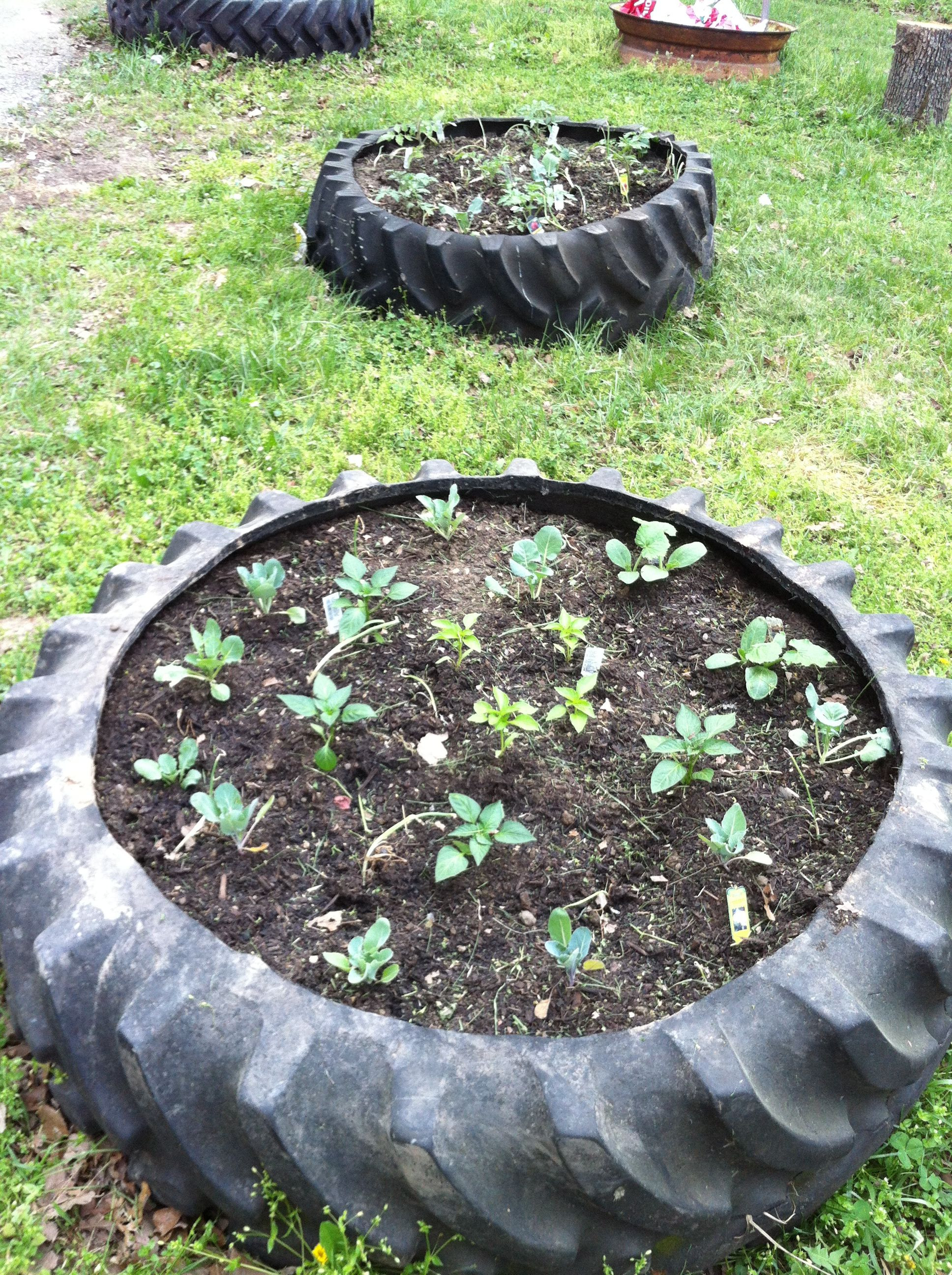 Easy raised garden beds made from recycled tractor tires The rim