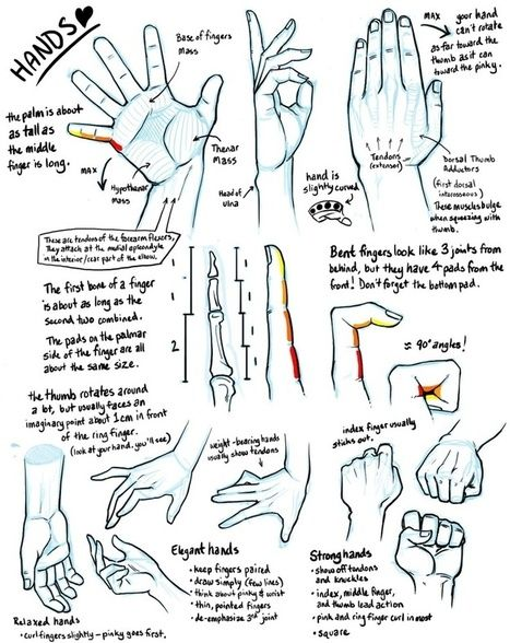 hand drawing reference guide drawing references and resources