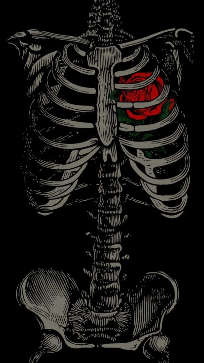Heart Skeleton iPhone Wallpaper - iPhone Wallpapers