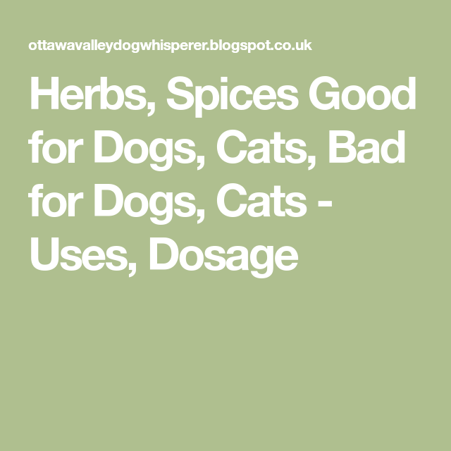 Herbs Spices Good For Dogs Cats Bad For Dogs Cats Uses Dosage