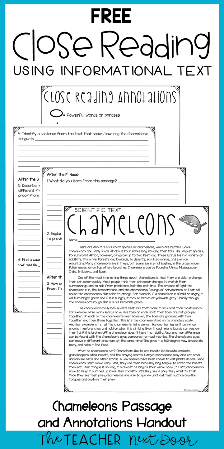 small resolution of FREE Close Reading Passage for 3rd - 4th Grades   Close reading passages