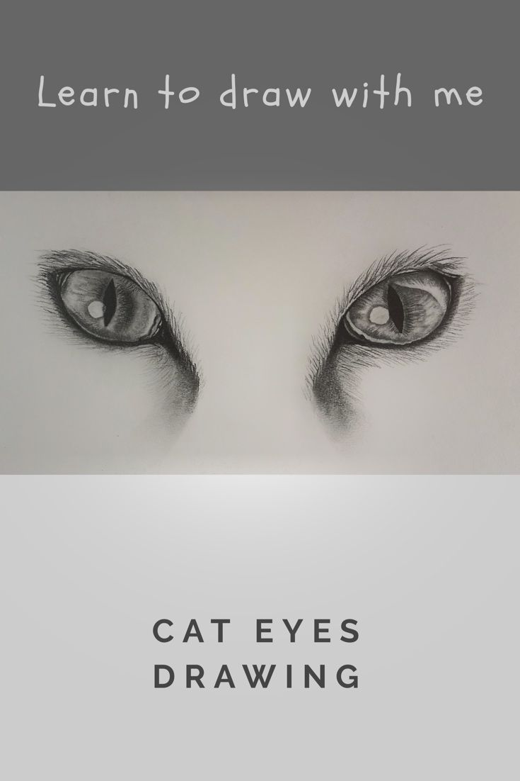 How to draw- Realistic cat eyes drawing- Step by step ...