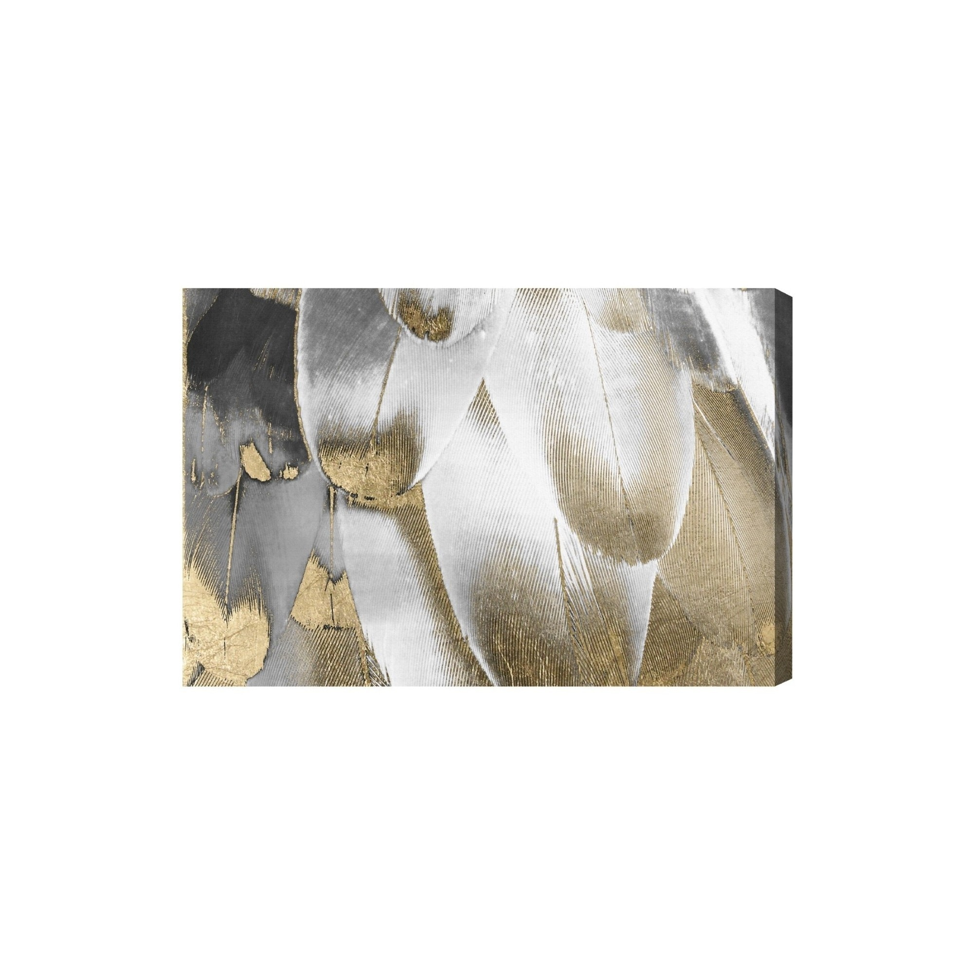 Oliver gal unframed wall royal feathers canvas art 36x24 gold white