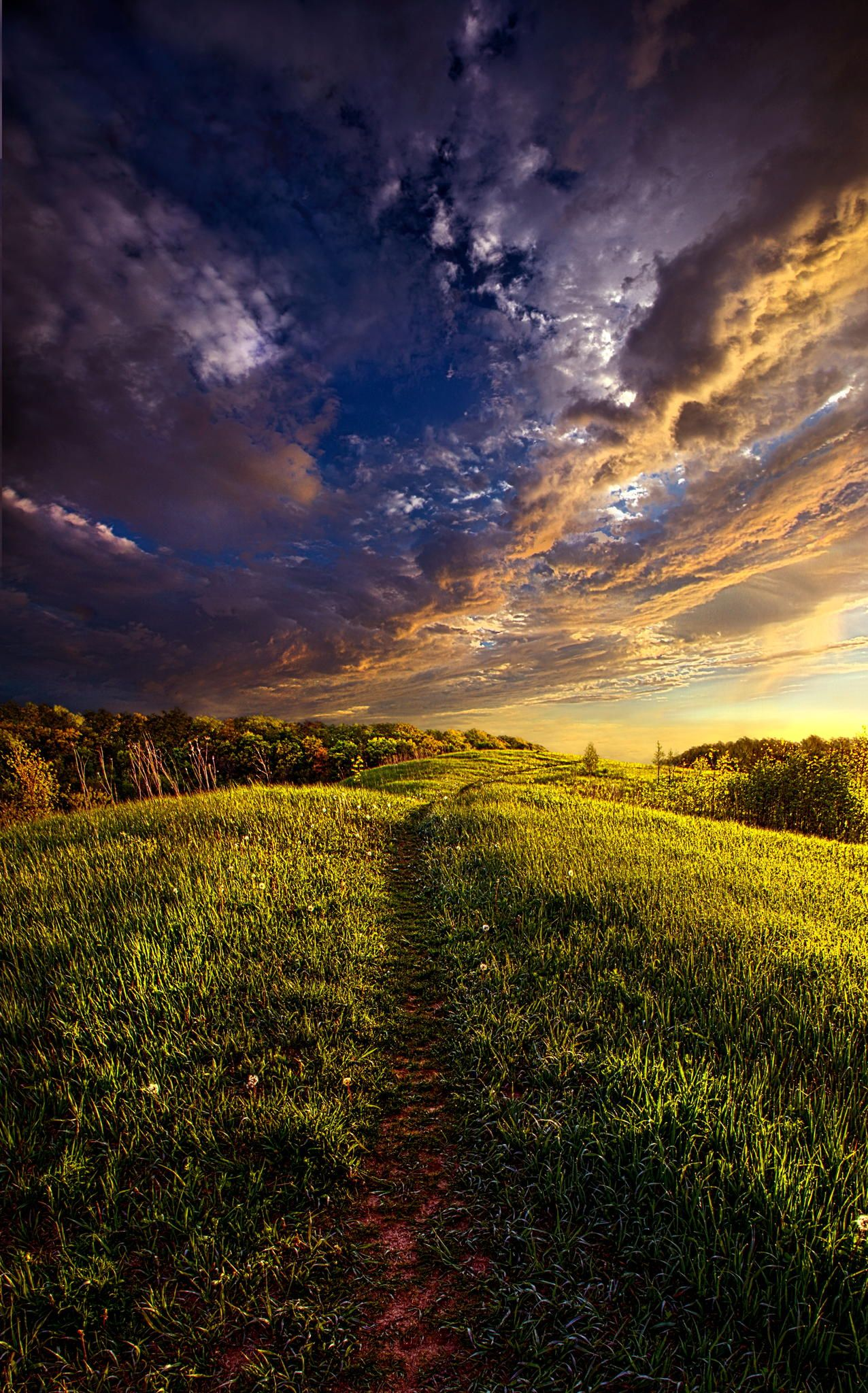 Follow Me  by Phil Koch on 500px