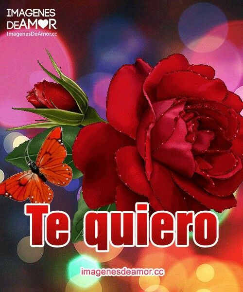 Pin De Liz Martinez En Imagenes De Amor Con Movimiento Con