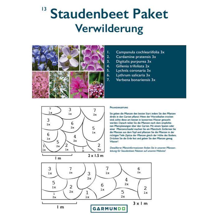 Staudenpaket Fur Ein Naturliches Blumenbeet 3m In 2020 Blumenbeet Anpflanzung Schaumkraut