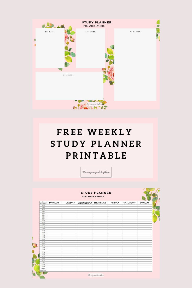 Cpa Study Schedule Template from i.pinimg.com