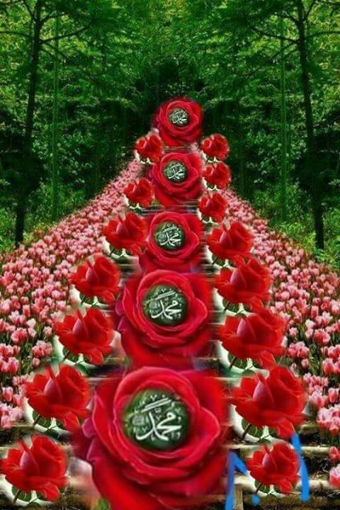 Desertrose إ ن ٱلل ه و م ل ئ ك ت ه ۥ ي ص ل ون ع ل ى ٱلن ب ي ي أ ي ه ا ٱل ذ ين ء ام ن وا ص ل Beautiful Gif Islamic Images Islamic Paintings