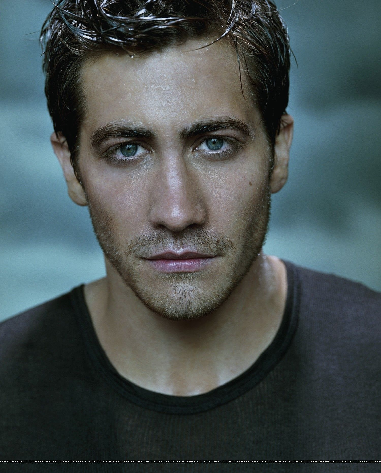 Image result for jake gyllenhaal portrait