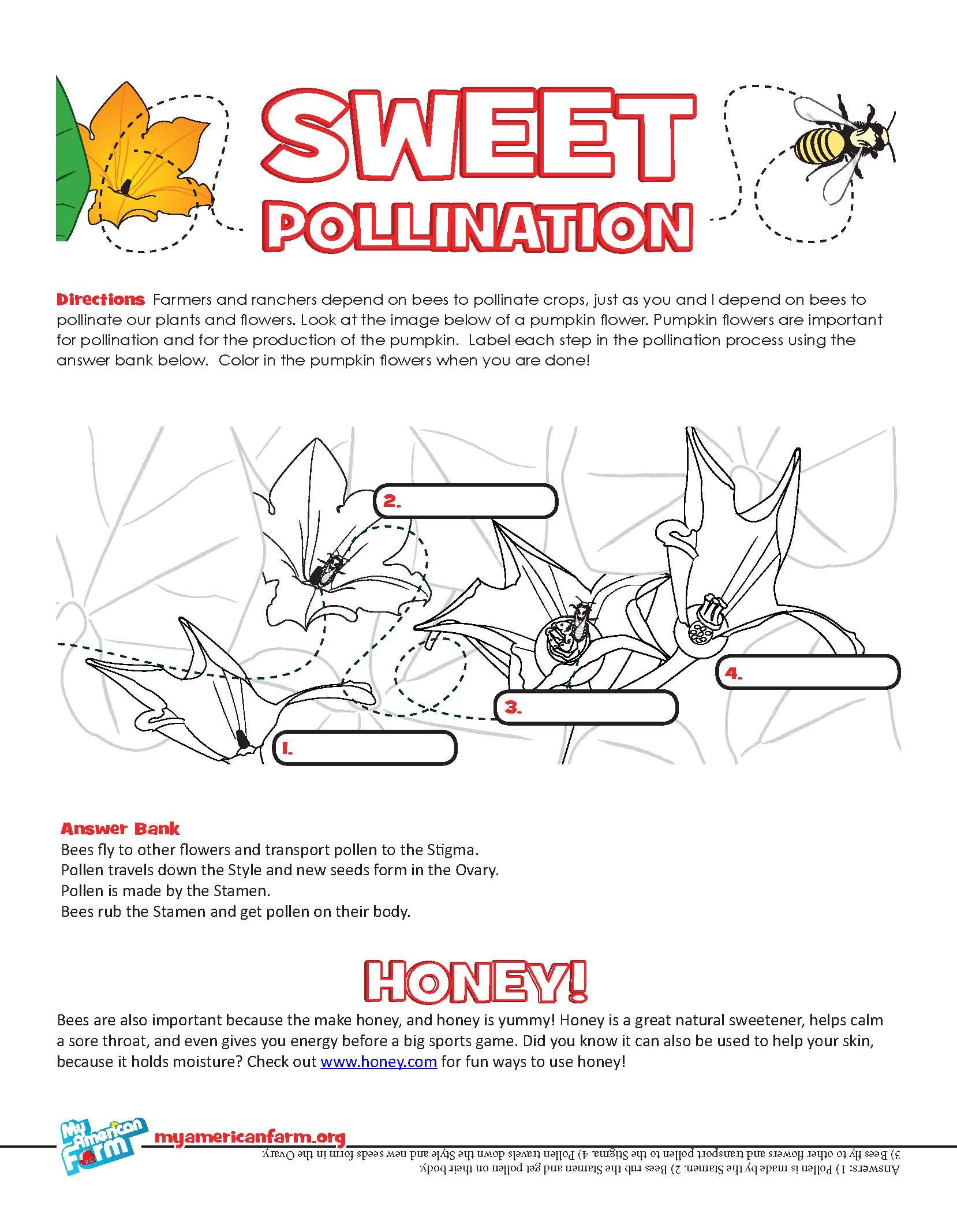 happy pollinator week check out this activity on my american farm http  [ 1658 x 2134 Pixel ]
