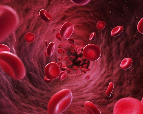 Conocida también como tensión arterial alta, es un trastorno en el que los vasos sanguíneos están sometidos a una presión más elevada de lo normal. Esta anomalía hace que el corazón tenga que realizar un esfuerzo mayor para bombear la sangre.