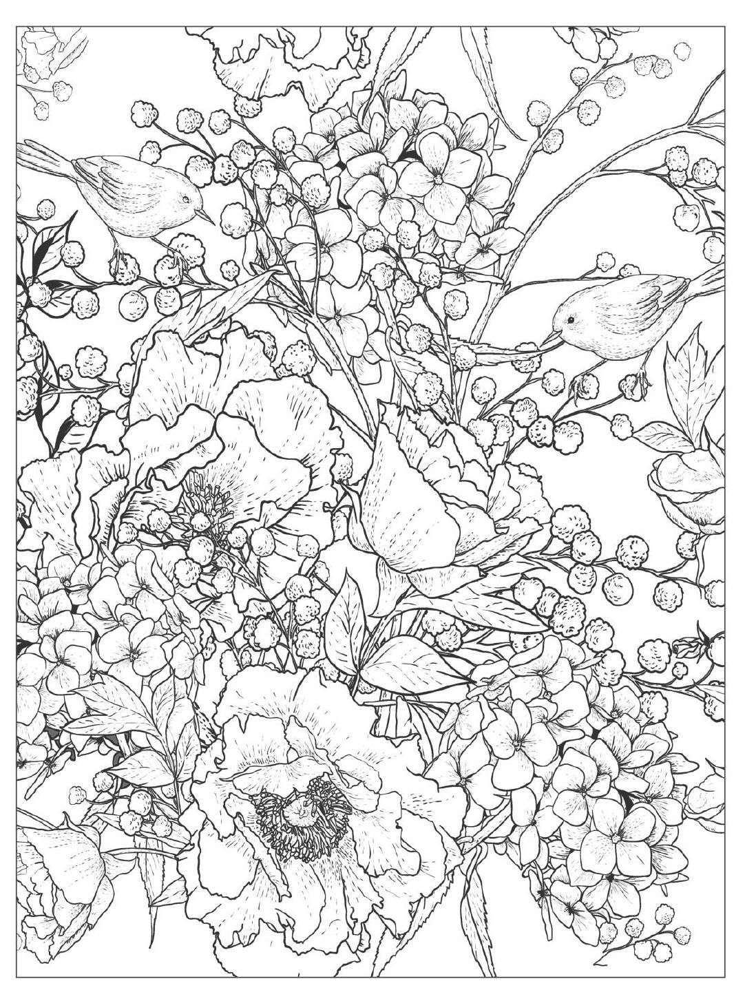 Beautiful Flowers Detailed Floral Designs Coloring Book - preview