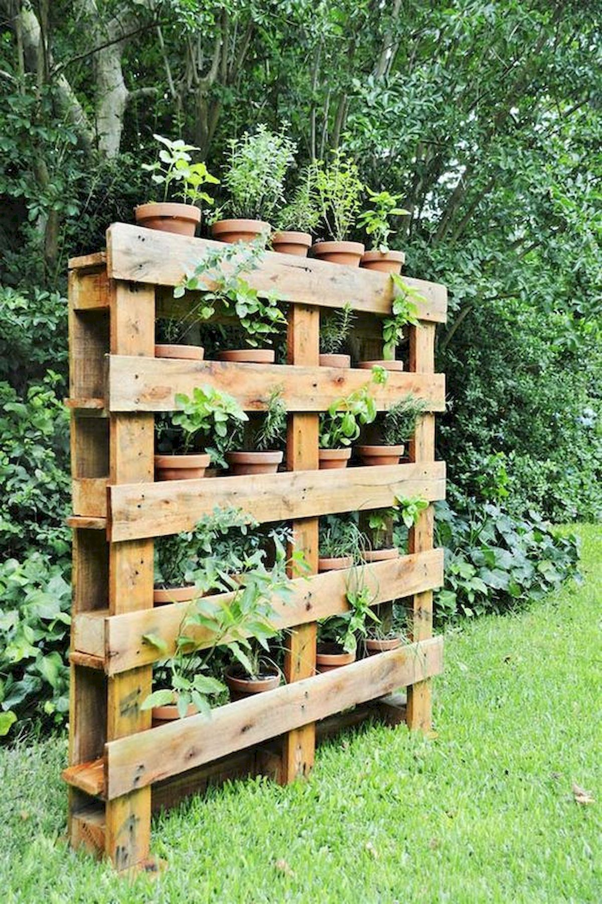 33 Ideas For Pallet Garden33decor Pallets Garden Garden