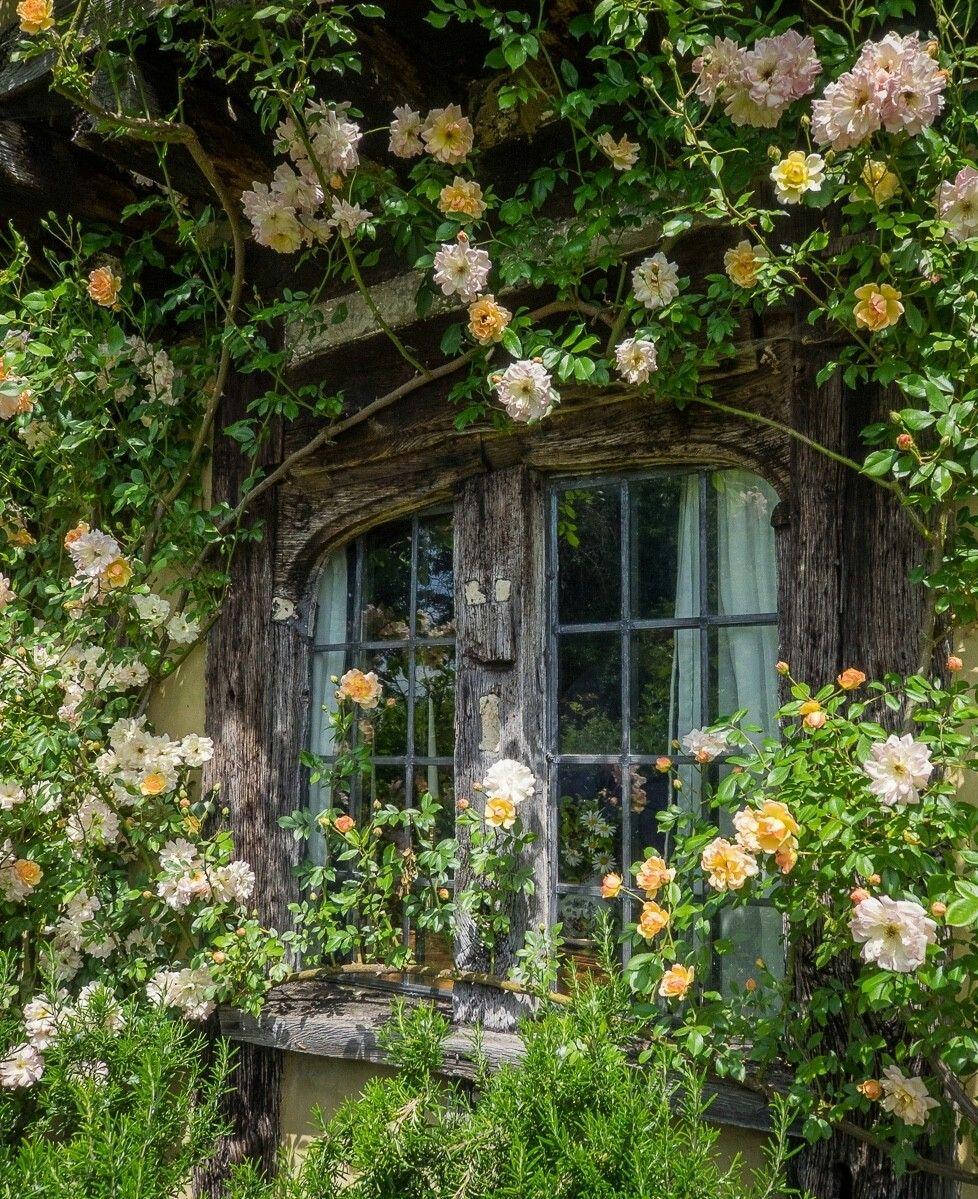 House box window design  secret window covered in flowers  inspi maison in   pinterest