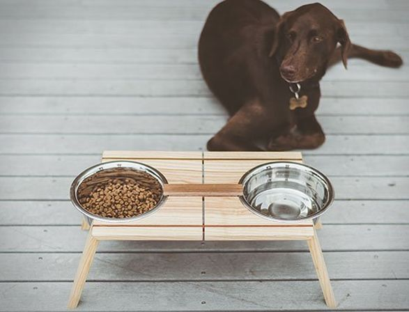 Bottoms Up Pet Dish Pets Dishes Food Dishes