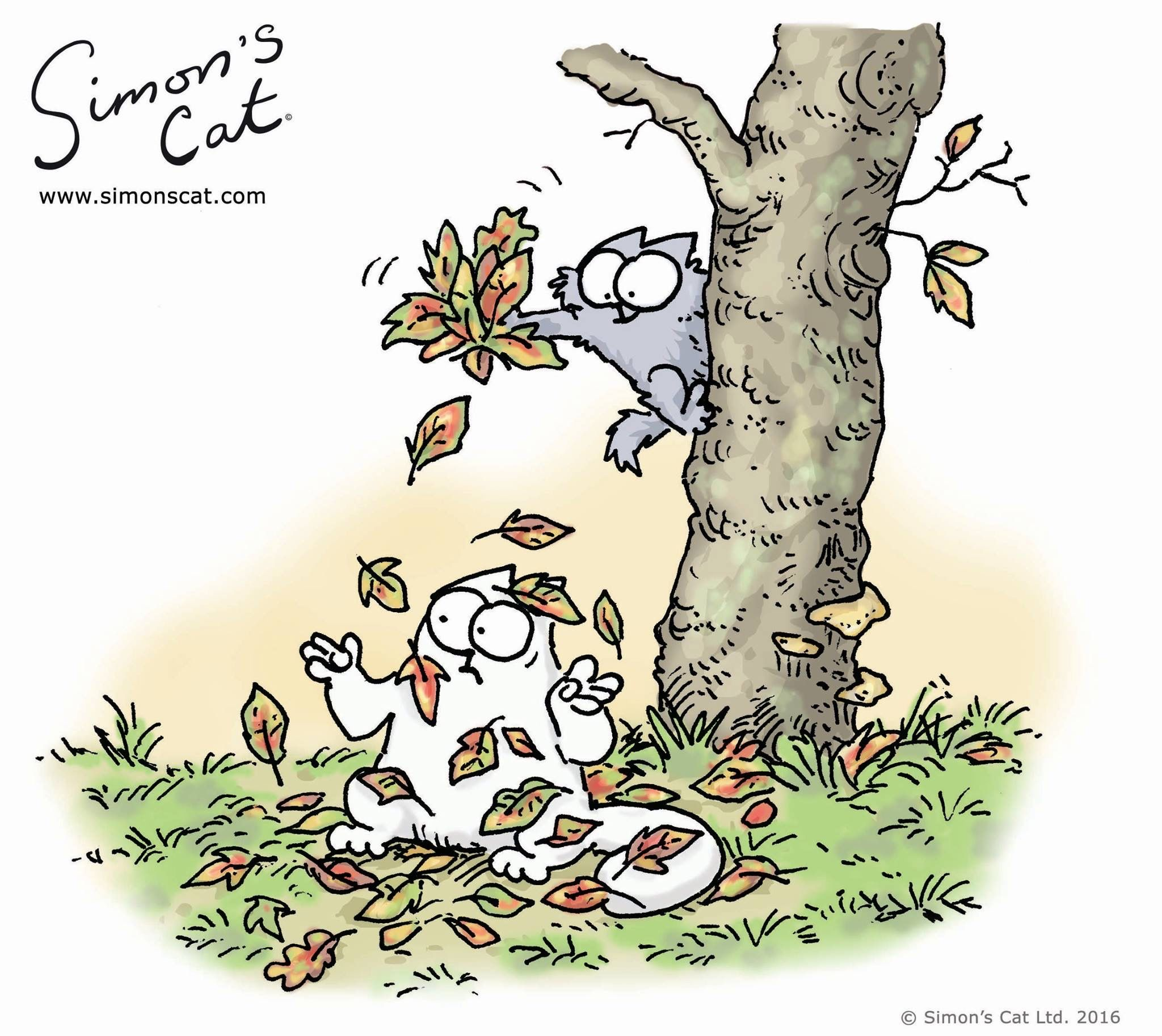 Pin by Mustang Lady on SIMON'S CAT!! in 2020 Simons cat