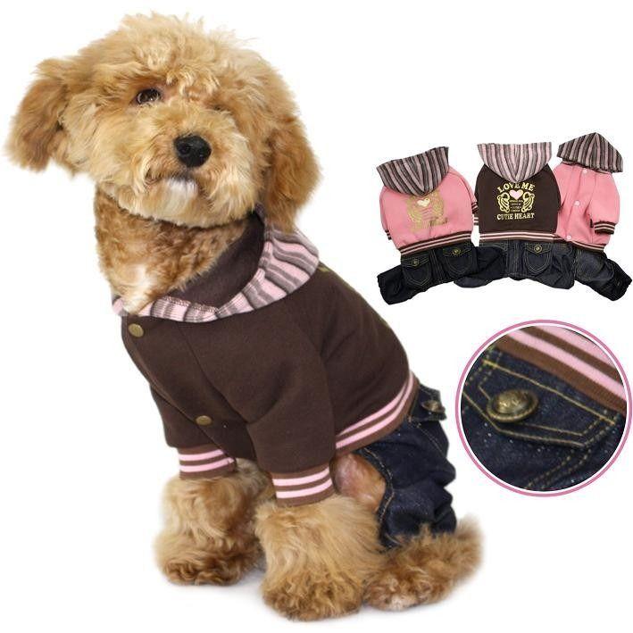 Teddy Bear Teddy Fashion